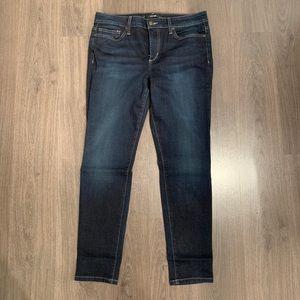 Joe's Jeans Icon Skinny Ankle Jean
